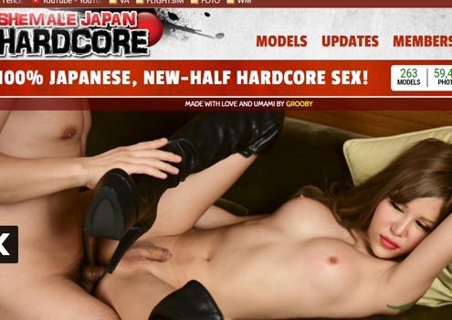 Nice hd porn website for the lovers of tgirls in sex movies