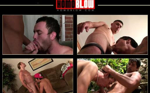 Nice pay adult website featuring gay blowjob videos
