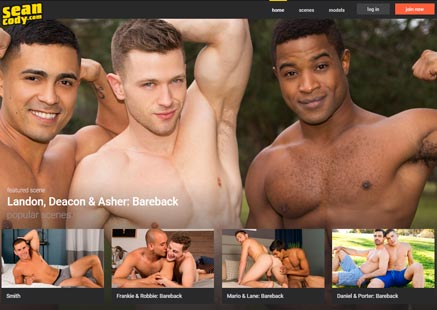 Greatest paid adult site full of twink gay porn material