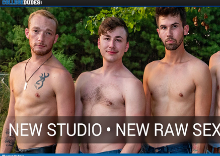 Top pay porn website to watch european gay adult stuff